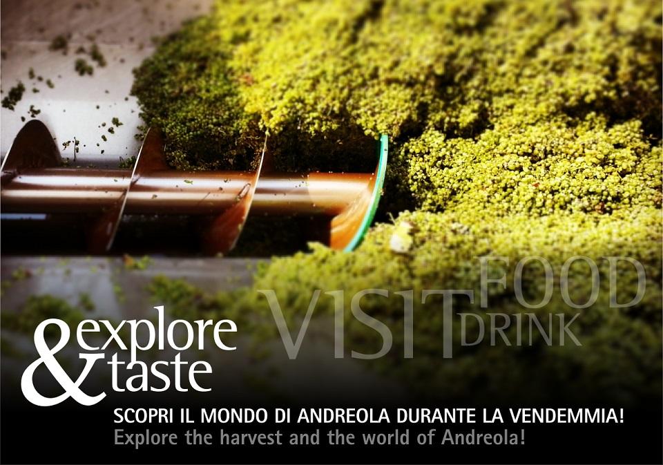 Explore&Taste: scopri il mondo di Andreola durante la vendemmia